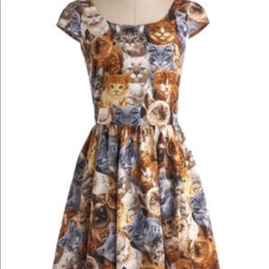 Retrolicious cat print fit and flair dress